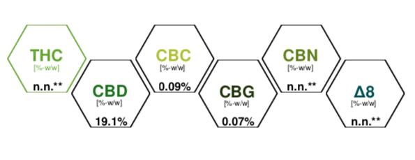 huile CBD 20% cannabinoiedes présents spectre complet
