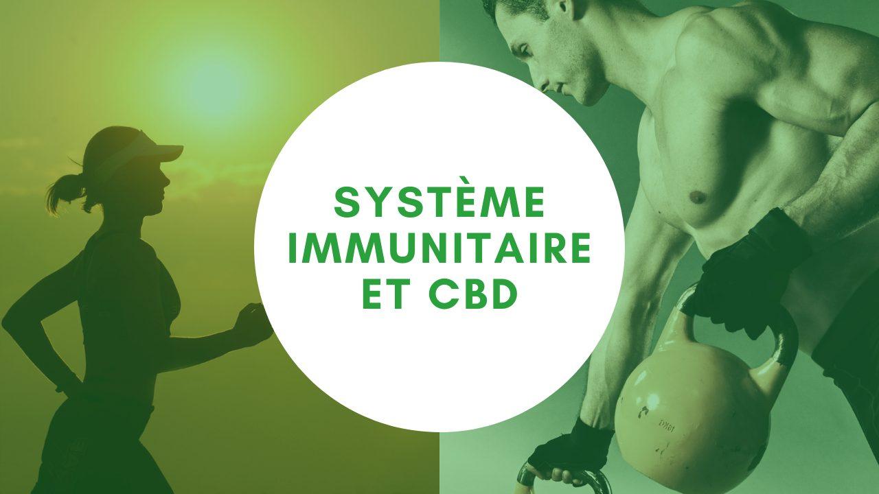 Système immunitaire et CBD