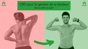 CBD pour la gestion de la douleur | Est-ce utile ou pas?