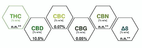 Spectre Huile CBD 10% base sans arôme Chaman CBD